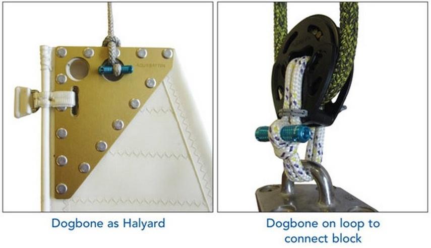 Dogbone_05.jpg